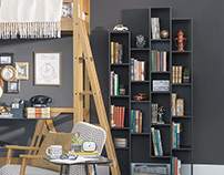 Ginga Bookshelf   Tok&STok