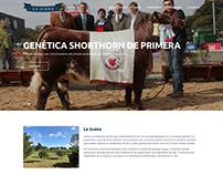 La Juana Cabaña Shorthorn & Angus