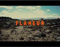 Flaneur