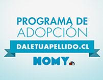HOMY - Programa de adopción