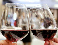 Wine Tasting Tips | Look | Smell & Taste