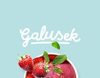 Galusek ice cream branding