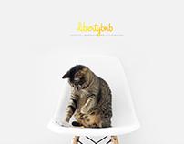 Libertybnb | Webdesign and illustration
