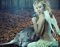 The Angel and the Wolf