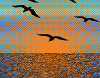 Birds at Sea Digital Art