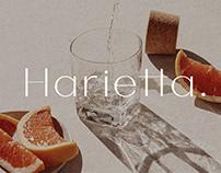Harietta - Semi-geometric Clean Sans