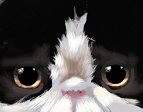 Kitten from Great Britain