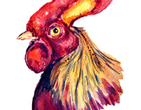 Coq watercolor