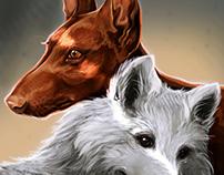 Pharaoh hound / Samoyed