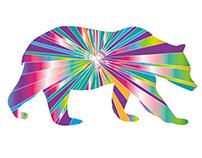 Digital Illustration - Tie Dye Bear