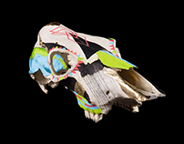 Crâne et Symétries // PIMP MY SKULL