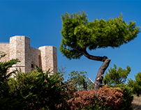 Castel del Monte - There's beauty in numbers...
