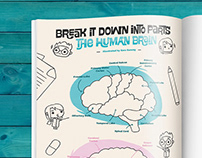Principia Kids #7 - The human brain