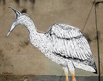 Ardea cinerea/ Action Painting