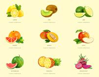 [Illustration] Summer Fruits