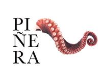 Piñera - Concept | Branding | Web