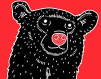 Black Bear. Oso negro.