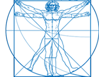 Golden Ratio body builder app