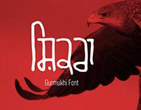 rgx PB Shikra Gurmukhi Font