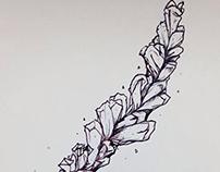 Lavender CRUSH'D