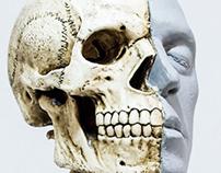 The human head.