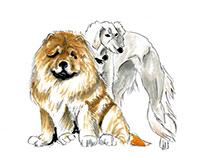 Opposites - dogs illustrations