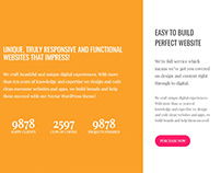 Nectar WordPress Theme - About Section