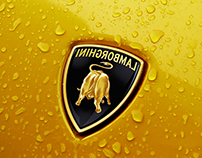 Behind of the Lamborghini logo
