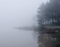 Misty walk lll