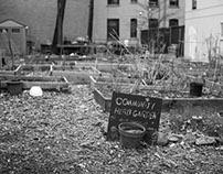 Gentrification: Harlem