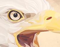 Águia - Animal de Poder