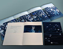 annual report and brochure for a icelandic bank.
