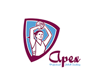 Apex Netball Coaching Logo