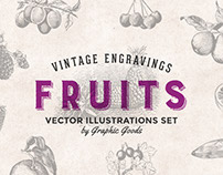 Fruits - Vintage Engraving Illustrations Set