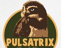 Logo Pulsatrix