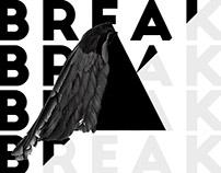 Breaking Bird