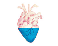 Ink heart // Illustration
