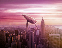 whale in the city