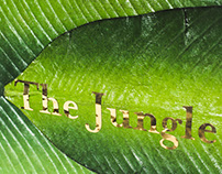 Book Design: The Jungle Book