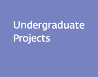 Undergraduate Projects