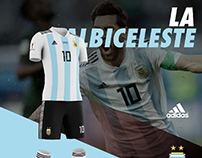 Argentina soccer uniform design