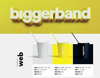 BiggerBand - Agency Brand Book