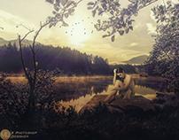 Waiting Beside The Lake