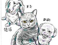 Pets illustraton /2018