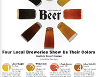 Shades of Beer Infographic