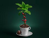 Kahve Dünyası - Turkish Coffee