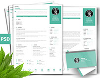 Free Clean Professional CV + Business Card Template