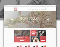 Fisheye Store Website Design