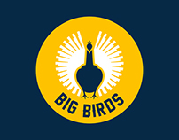 Big Birds (2014) – Event Identity