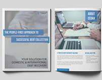 Cedar Financial Brochure